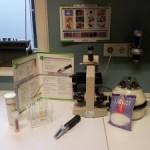 In het laboratorium kunnen we onder andere urine onderzoeken, maar ook ontlasting of huidafkrabsels voor kleine parasietjes